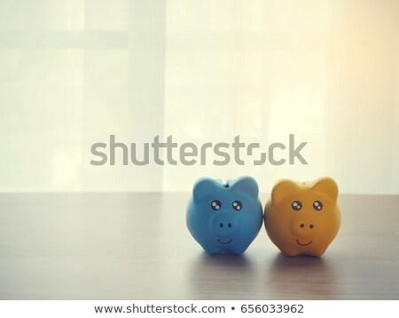 Two piggy banks drying Stock photo © dutourdumonde