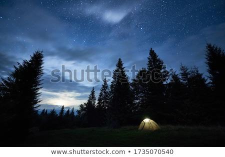 幻想的な 曇った 空 森林 丘 緑 ストックフォト © maxpro