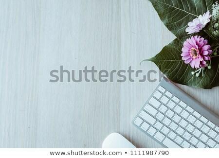 Moderne ontwerp draadloze computermuis geïsoleerd Stockfoto © alexmillos