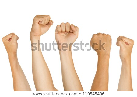 Isolated fists for protest, support concepts Stock photo © stockyimages