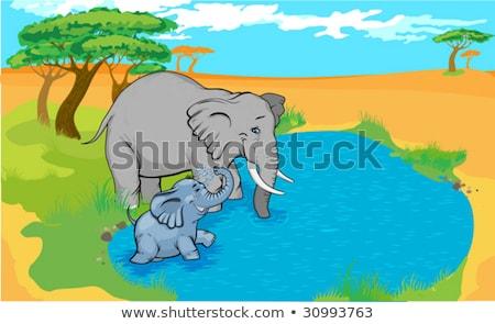 Ivóvíz elefánt víz iszik lyuk természet Stock fotó © JFJacobsz