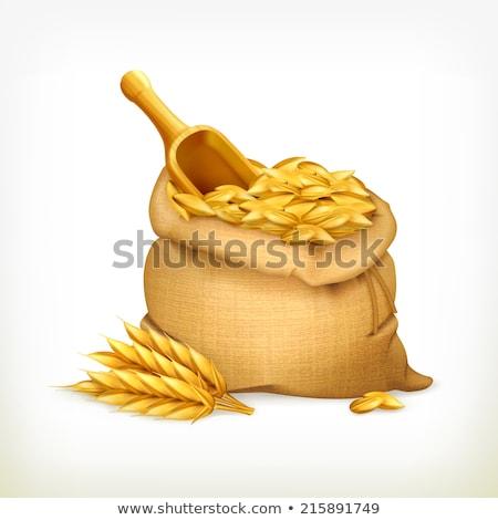 érett gabona aratás évszak háttér retro Stock fotó © stevanovicigor