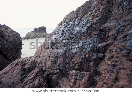 Sea empress Stock photo © Novic