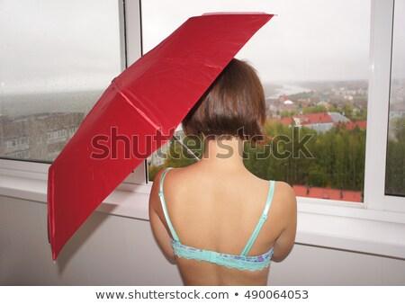 Woman behind window observing outdoor Stock photo © roboriginal