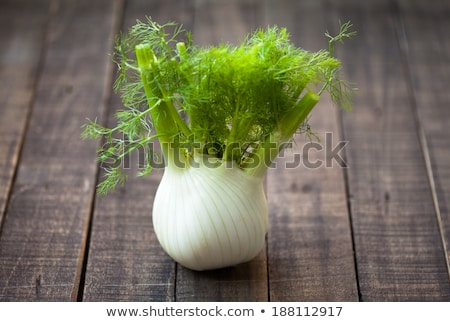 fresh fennel full of vitamins and fibers Stock photo © master1305