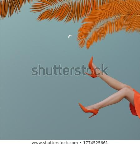 3次元の女 ジャンプ 空気 白 背景 美 ストックフォト © nithin_abraham