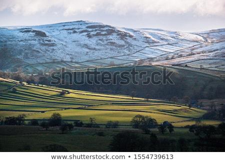 Йоркшир пейзаж красивой солнце трава стены Сток-фото © chris2766