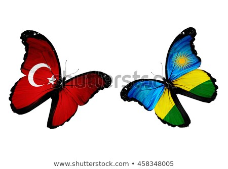 Turkey and Rwanda Flags Stock photo © Istanbul2009