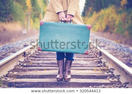 Vintage valise chemin de fer route tunnel Voyage Photo stock © deyangeorgiev