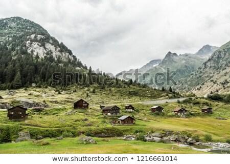 meadow, lake and old hut at Hallstatt Stock photo © meinzahn