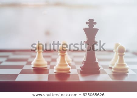 Chess King And Pawn Stock photo © cosma