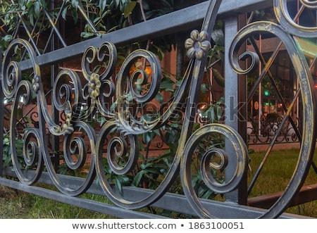 Metaal hek wijnstok bloemen illustratie gras Stockfoto © bluering