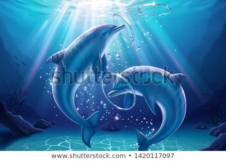дельфины пару иллюстрация воды семьи рыбы Сток-фото © adrenalina