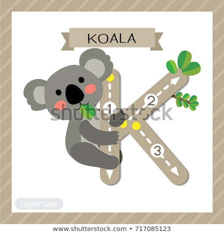 Flashcard letter K is for koala Stock photo © bluering