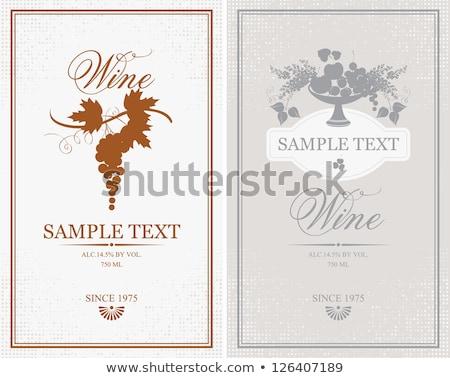 Dois retângulo vermelho branco ilustração Foto stock © bluering