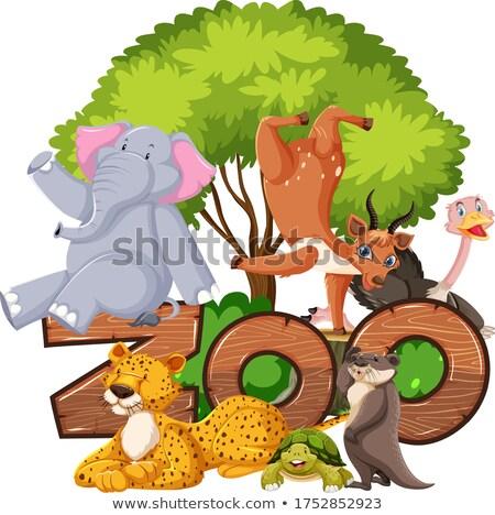 зоопарке · сцена · многие · иллюстрация · человека - Сток-фото © bluering