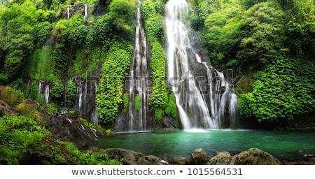 Tropicales cascada muro de piedra palmas cielo paisaje Foto stock © MichaelVorobiev
