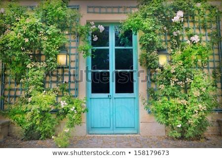 Old door and climbing plant  Stock photo © manera