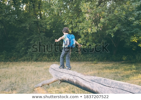 少年 座って 木の幹 森林 肖像 幸せ ストックフォト © wavebreak_media