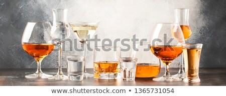 Szett alkoholos ital illusztráció étel sör üveg Stock fotó © bluering