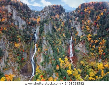 autumn mountainside view Stock photo © wildman