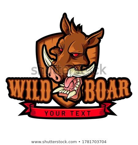 Wild Hog Biting Pickle Circle Mascot Stock photo © patrimonio
