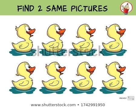 talál · kettő · azonos · betűk · szín · könyv - stock fotó © izakowski