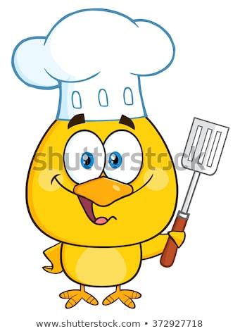 chef · cartoon · kip · bruin · haan · mascotte - stockfoto © hittoon