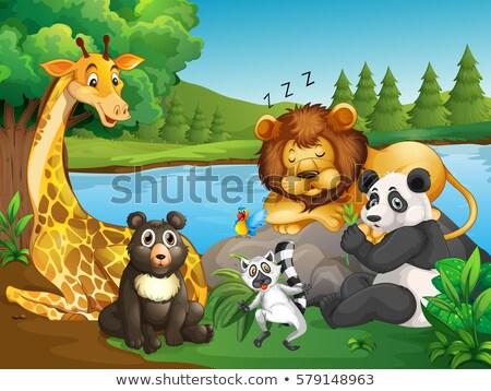 Veel wilde dieren meer illustratie natuur landschap Stockfoto © colematt