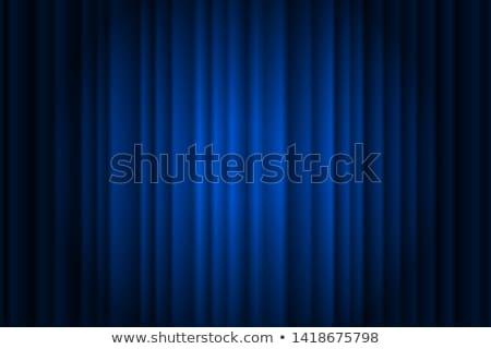 Bleu rideaux théâtre stade Photo stock © ElenaShow
