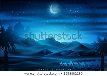 Kamelen nacht woestijn maanlicht zanderig Stockfoto © liolle