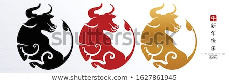 vettore · cinese · astrologia · calendario · cute · acqua - foto d'archivio © vetrakori