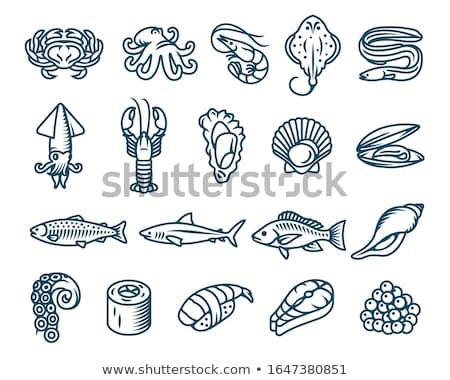 Wektora owoce morza zestaw homara krewetki Zdjęcia stock © netkov1
