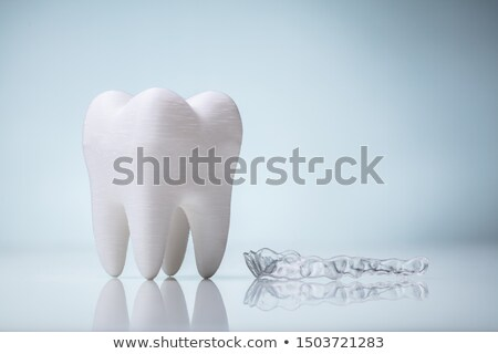 Ceramic Model Of Tooth And Mouth Guard On Desk Stock photo © AndreyPopov