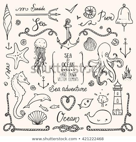 Cartoon cute bazgroły morski ramki Zdjęcia stock © balabolka