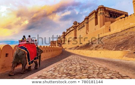 Amber fort Indië beroemd indian toeristische Stockfoto © dmitry_rukhlenko