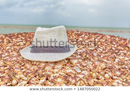 Close up of a man in a straw hat lying on the beach Stock photo © photography33