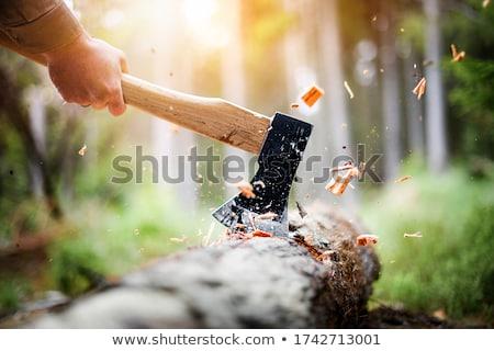 yakacak · odun · detay · ahşap · çalışmak · işçi - stok fotoğraf © basel101658