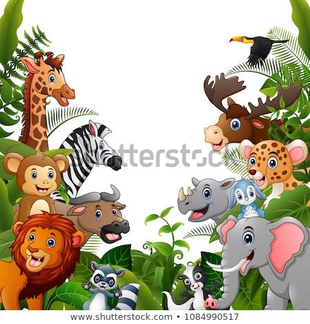 wild animal cartoon with blank sign stock photo © dagadu