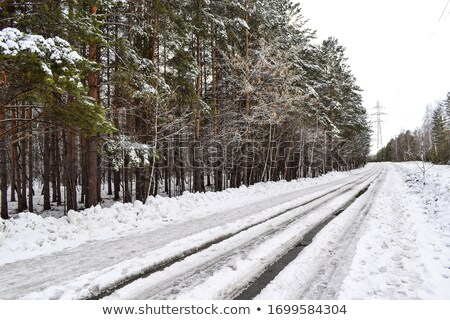 Winter weg modder nat glad textuur Stockfoto © ultrapro