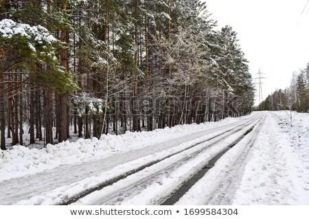 inverno · strada · fango · umido · scivoloso · strada - foto d'archivio © ultrapro