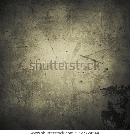 Old Wall. Tinted Background. Stock photo © tashatuvango