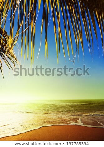Amazing sunset scene. Taken at the tropical beach in evening tim Stock photo © moses