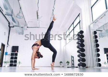 tenen · detail · ballet · dansers · groot · exemplaar · ruimte - stockfoto © gromovataya