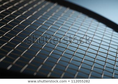 Badminton Pióro wypoczynku zewnątrz Zdjęcia stock © leungchopan