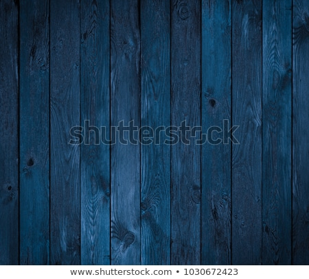 fences in blue stock photo © iko