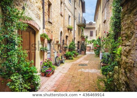 old tuscany building with flowers pienza italy stock photo © fisfra
