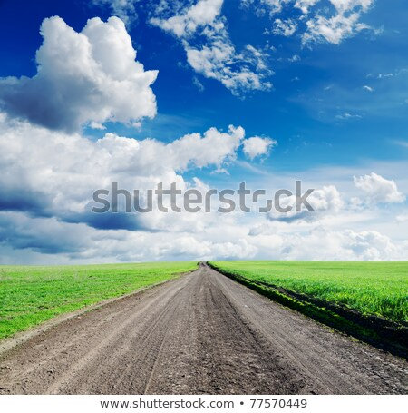 rural road in green field under dramatic sky Stock photo © mycola