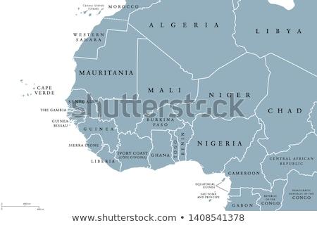 Afryki Pokaż Gambia banderą kraju przycisk Zdjęcia stock © Ustofre9