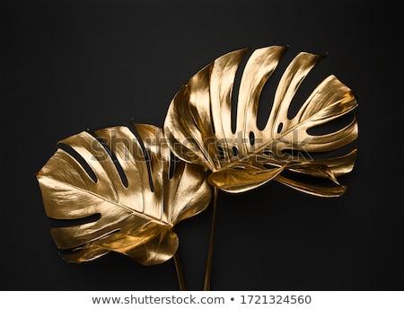abstrato · ouro · mineral · textura · bom · naturalismo - foto stock © dengess